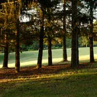 Photo GOLF DE TOULOUSE PALMOLA