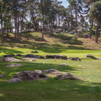 Photo GOLF DE FONTAINEBLEAU 19