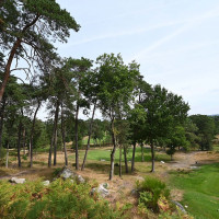 Photo GOLF DE FONTAINEBLEAU 21