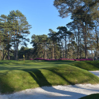Photo GOLF DE FONTAINEBLEAU 4