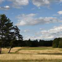 Photo GOLF DE CHANTILLY VINEUIL 5
