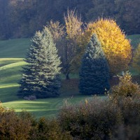 Photo GOLF CLUB D'ABLEIGES 3
