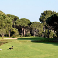 Photo GOLF DE VALESCURE 1