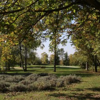 Photo GOLF DE CHALONS-EN-CHAMPAGNE GRANDE ROMANIE 10