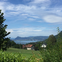 Photo GOLF DU LAC D'ANNECY 6