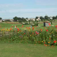 Photo GOLF BLUEGREEN DOMAINE DES FORGES