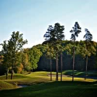 Photo GOLF VICHY FORET DE MONTPENSIER 1