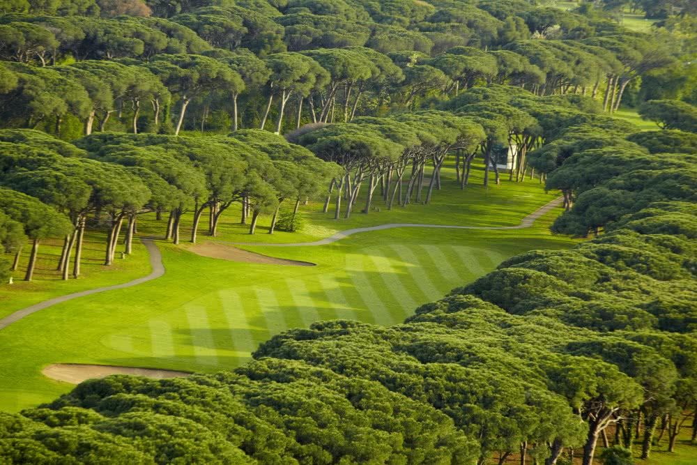OLD COURSE CANNES MANDELIEU