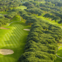Photo OLD COURSE CANNES MANDELIEU 6